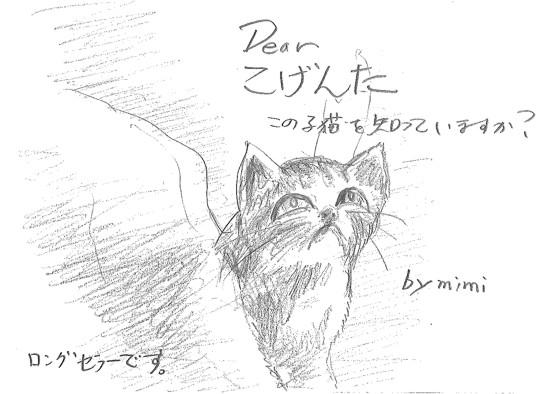 Dearこげんた この子猫をしっていますか?1.jpg