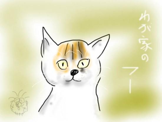 わが家のフーちゃん 1.jpg