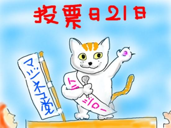 参院猫 - 1.jpg