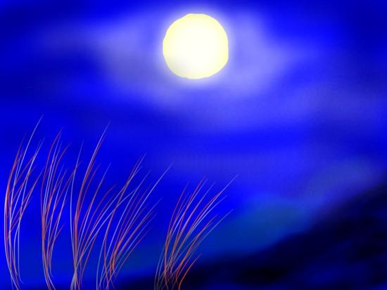 名月 - 1.jpg