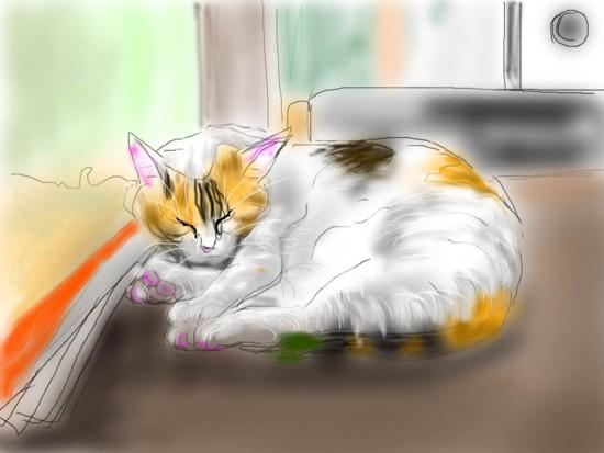 朝寝する猫 - 1.jpg