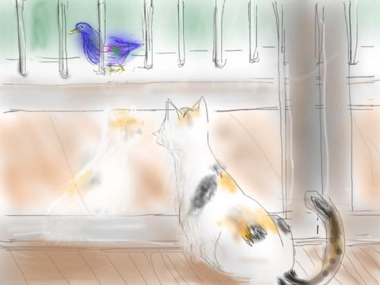 猫とキジバト.jpg