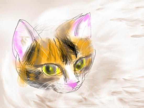 猫の顔 - 1.jpg