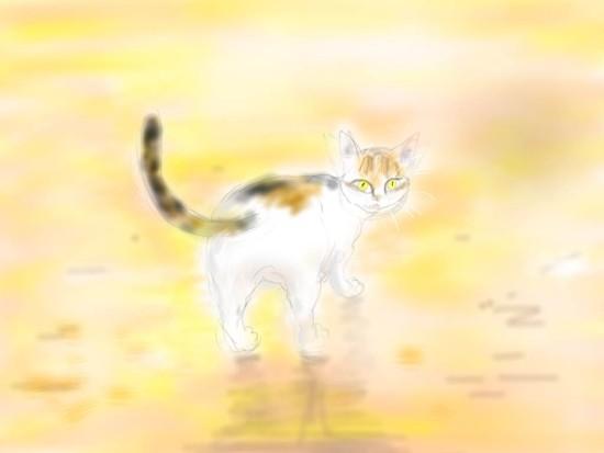 見返り猫.jpg