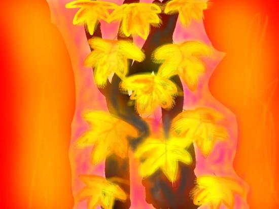 黄葉 - 1.jpg