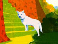 高野山の案内犬ゴン 高野山開創1200年