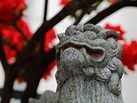 神社仏閣 パワースポットで神さまとコンタクトしてきました─ひっそりとスピリチュアルしています Part2